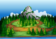 An island full of pine trees Royalty Free Stock Photos