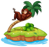 An island with a gorilla Royalty Free Stock Image