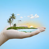 Island on the hand. Stock Photography
