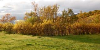 Island-Herbst Stockbild