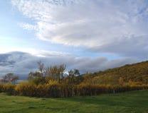 Island-Herbst Stockfotos