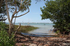 Island. Hidden little cove in Florida bay Royalty Free Stock Photography