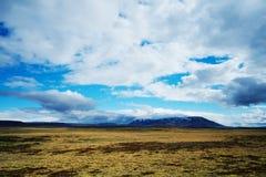 Island-Hochländer stockfotografie
