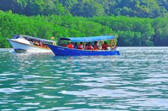 Island hopping boats to beautiful tropical island. The traditional boats in Island hopping excursion to the Pregnant Maiden Island in Malaysia Royalty Free Stock Photos