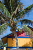 Island house. Small house on an island in the caribbean Royalty Free Stock Photo