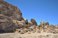 Island Inca Wasi - cactus island Stock Photo