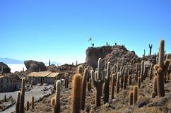 Island Inca Wasi - cactus island Stock Images