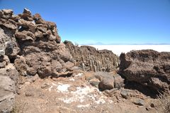 Island Incahuasi  Salar de Uyuni, Bolivia. The island of cactuses on Uyuni's saline soil Royalty Free Stock Photos