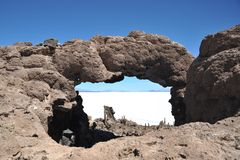 Island Incahuasi Salar de Uyuni, Bolivia. The island of cactuses on Uyunis saline soil Stock Photos