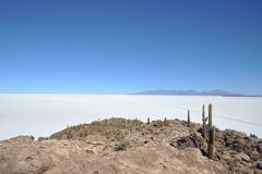 Island Incahuasi Salar de Uyuni, Bolivia. The island of cactuses on Uyunis saline soil Royalty Free Stock Photo