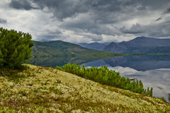 Island on Jack Londons lake. Reflexion. Cloudy. Magadan, Kolyma Stock Image