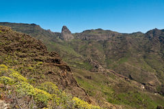 Island of La Gomera, Palm Valley Stock Image