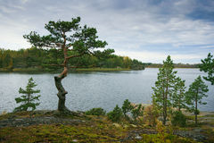 Island of Ladoga Stock Photo