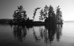 Island in a lake. In black and white Stock Photo