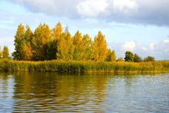 Island   on lake in the autumn. Island with trees  on lake in the autumn Stock Photo
