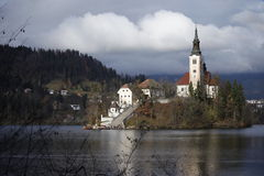 Island in Lake Bled Royalty Free Stock Photo