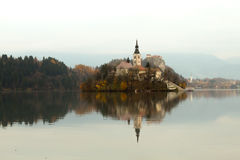 Island on lake Bled Stock Image