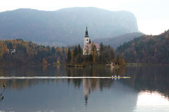 Island on lake Bled Royalty Free Stock Images