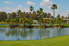 Island lake golf Stock Photos