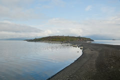 Island in the lake. Royalty Free Stock Photo