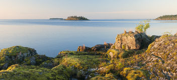 Island in Lake Ladoga Stock Photos
