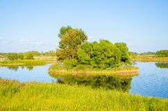 Island on lake Royalty Free Stock Photo
