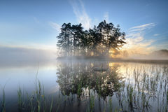 Island. In a lake with the sun coming up behind the trees Stock Photography