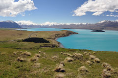 Island on Lake Tepako Stock Photo