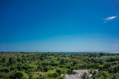 Green forrest nature view with ocean and blue sky stock photos