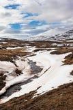 Island-Landschaft im Frühjahr lizenzfreie stockfotografie