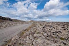 Island lavafält royaltyfri fotografi