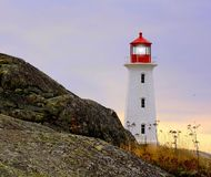 Island Lighthouse in Autumn royalty free stock photo
