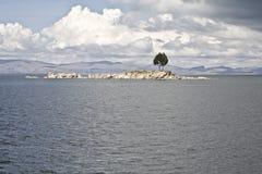 island lonely tree Στοκ Εικόνα