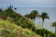 Island of Madeira Royalty Free Stock Photos