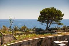 Island of Mamula fortress, the entrance to the Boka Kotorska bay, Montenegro Royalty Free Stock Photos