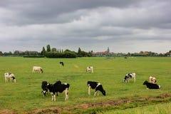 The island of Marken, Holland, Netherlands Stock Photos