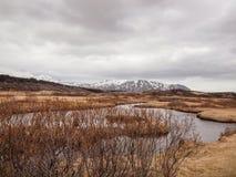 Island mars 2015: grov natur arkivbild