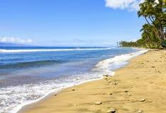 Island Maui gold sandy beach with palm trees. Stock Photos