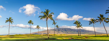 The Island of Maui, Hawaii Stock Images