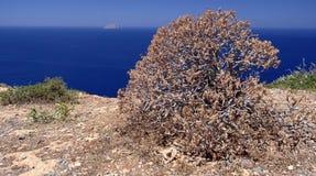 Island in the Mediterranean sea Royalty Free Stock Image