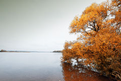 Island melancholic autumn Royalty Free Stock Images