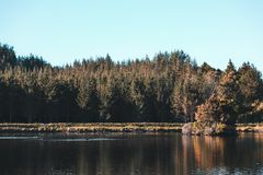 Island in the middle of a lake Royalty Free Stock Photo