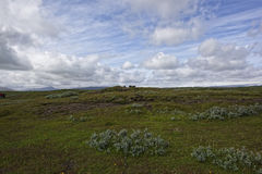 Island. Misty Landscape in Iceland.Geithemal Stock Images