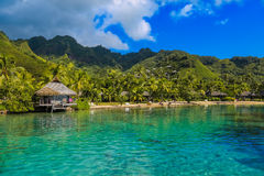 Island of Moorea in the French Polynesia Stock Images