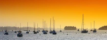 Island in Morbihan  gulf Royalty Free Stock Image