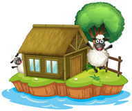 An island with a native house and two sheeps Stock Photography