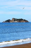 Island near Iztuzu beach and a seagull Royalty Free Stock Image