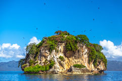 Island near the Samana shore, Dominican republic. Small Stone Islands in Samana Peninsula, Dominican Republic Royalty Free Stock Images
