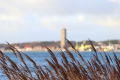 Island in the Netherlands with a lighthouse. Dutch island with a lighthouse behind the grass stock photo