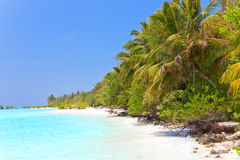 Island in ocean, Maldives.Landscape in a sunny day Stock Image